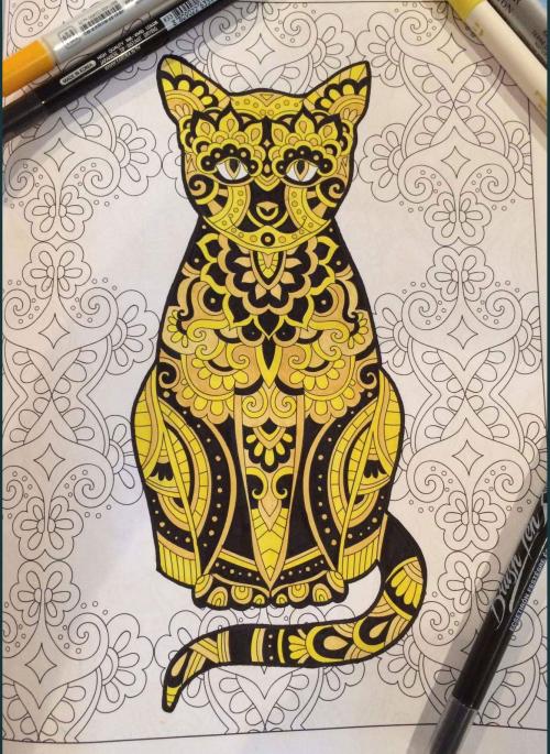 Cat book2