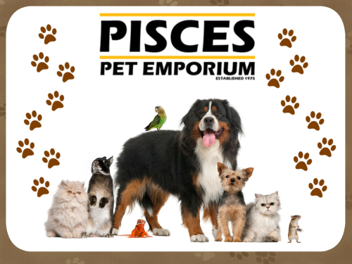 Pisces Pet Emporium - The Largest Family-owned, Independent