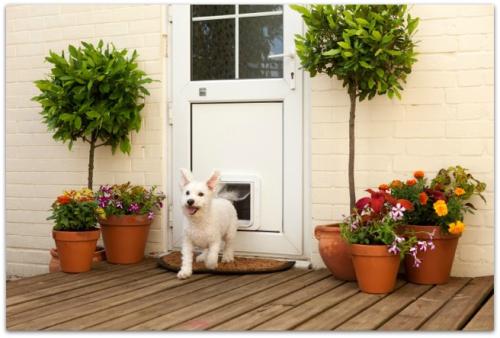 SureFlap_Microchip_Pet_Door_aerlin_Outside_UPVC_Door