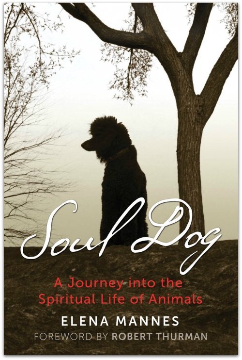 Soul Dog by Elena Mannes hr