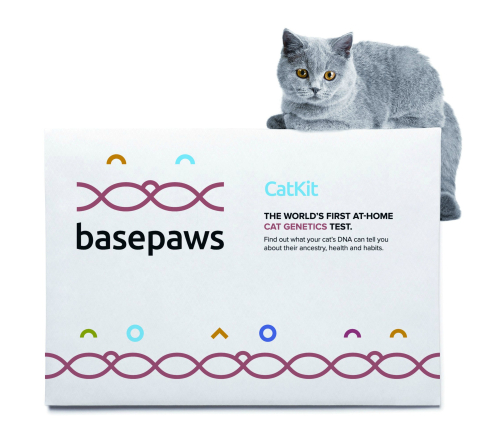 Basepaws1