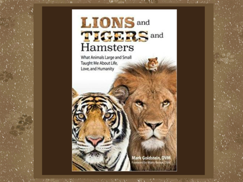 Cover lions