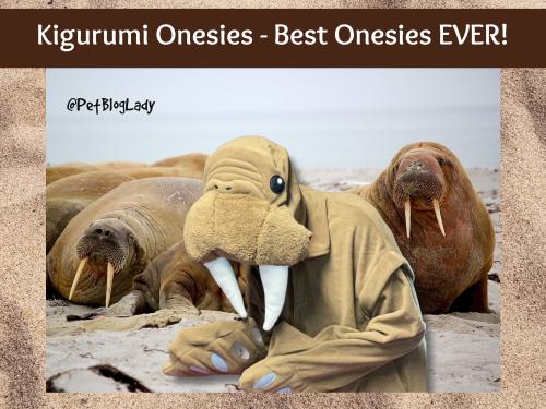 Onesies cover