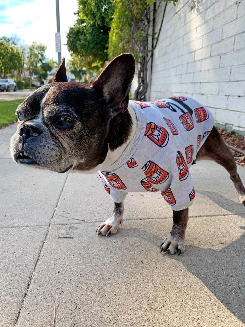 Dilla's Favorite Dog Sweater (1)