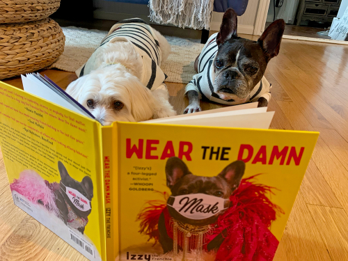 Willow and Dilla Reading Book by Izzy the Frenchie